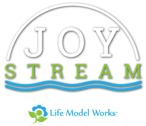 joy-stream-lmw