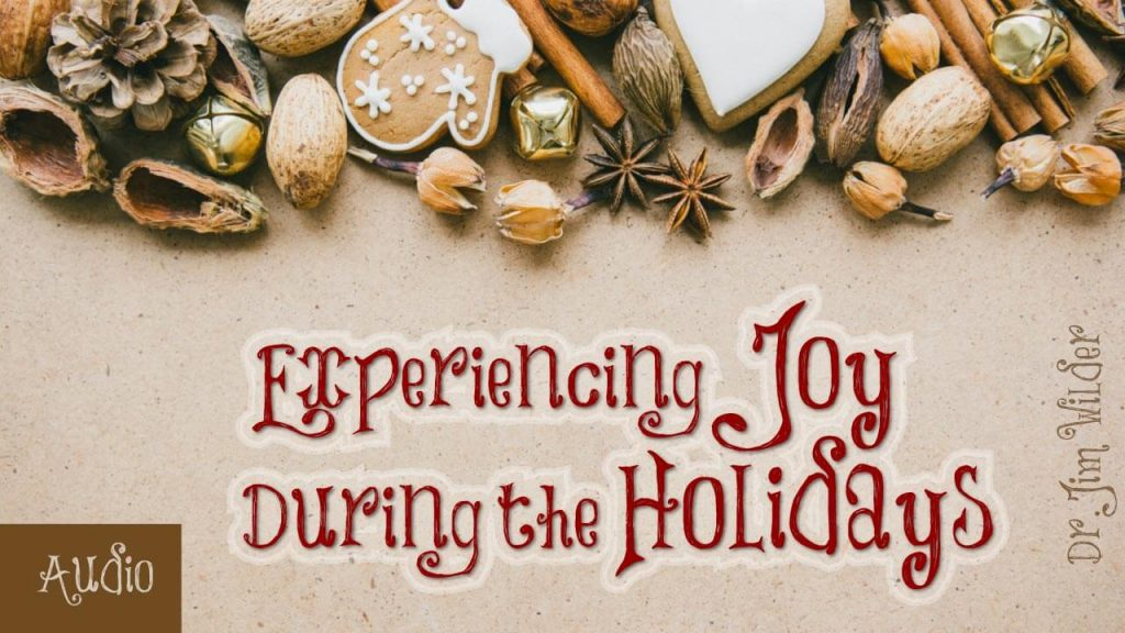experiencing-joy-during-the-holidays-by-jim-wilder