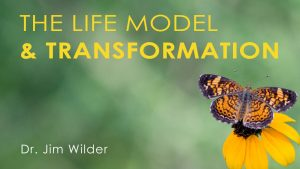 the-life-model-and-transformation